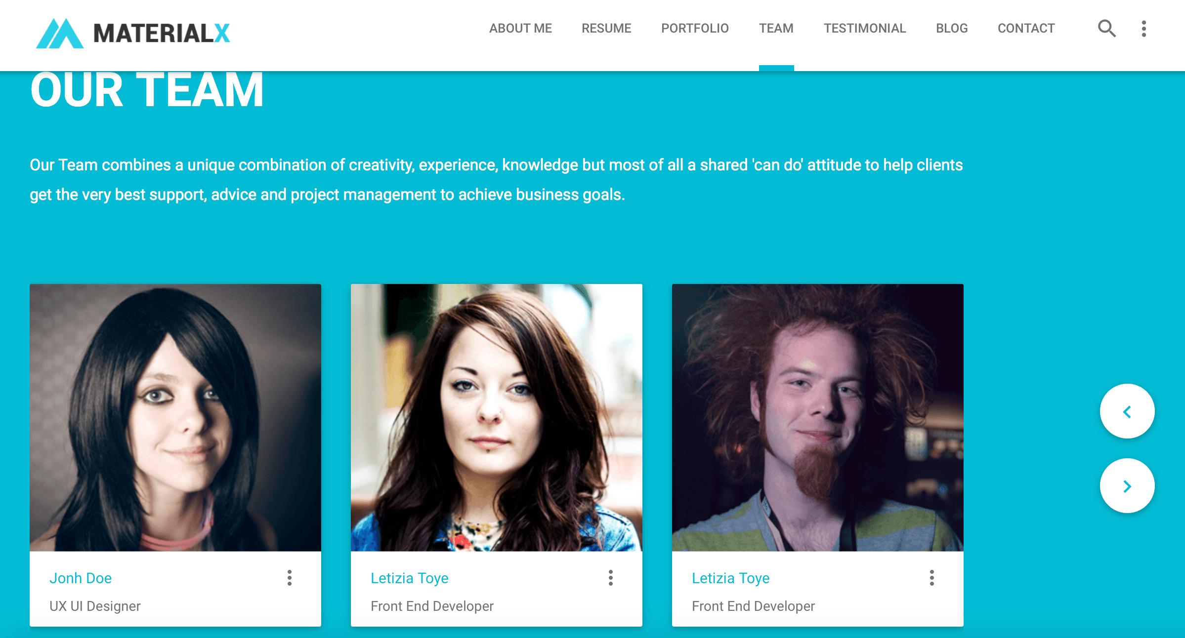 team-portfolio-template